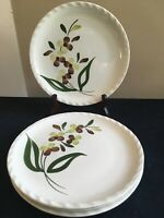 "SET OF 4 Blue Ridge Southern Pottery SPRAY 9-3/8"" Luncheon Plates; EUC!"