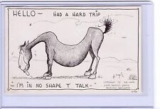 VINTAGE HORSE HELLO HAD A HARD TRIP NO SHAPE TO TALK..#934 POSTCARD HAL EMPIE