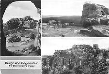 BG29392 burgruine regenstein bei blankenburg harz   germany CPSM 14.5x10cm