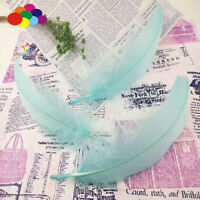 100 Pcs Goose feathers Light blue 15-20Cm/6-8Inch Diy Stage Props Decor Headress