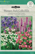 50 MIXED BULBS garden spring flowers NEW PLANT JANUARY TO AUGUST summer various