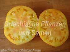 Pink Grapefruit TOMATE Tomaten VIEUX TYPES historiques 10 graines