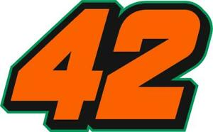 NEW FOR 2021 #42 Ross Chastain Racing Sticker Decal - SM thru XL - Various clrs