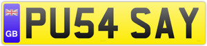 FUNNY RUDE SEXY NAUGHTY PRIVATE NUMBER PLATE PU54 SAY✔️DVLA FEES PAID✔️✔️CAT KAT