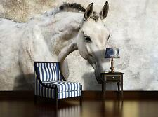 Horse Wallpaper mural for bedroom & living room Giant photo wall - Animals creme