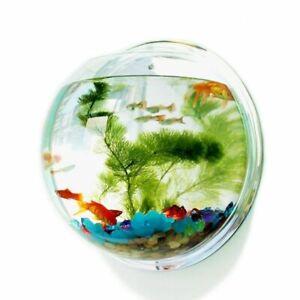 Wall-mounted Aquarium Tank Home Fish Bowls Hanging Decors Aquariums Accessories