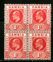 Gambia Stamps # 29 NH LH 3 Copies Scott Value $88.00