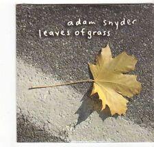 (EZ349) Adam Snyder, Leaves of Grass - 2004 sealed DJ CD