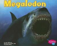 Megalodon: By Riehecky, Janet