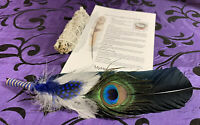 SMUDGE BLACK FEATHER FAN SAGE ENERGY Home CLEANSING CLEARING KIT w INSTRUCTIONS