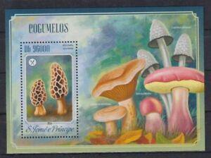 V403. Sao Tome & Principe - MNH - 2014 - Nature - Plants - Mushrooms - Bl.