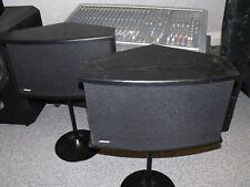 Bose 901 VI mit Tulpenstäder ohne Equalizer