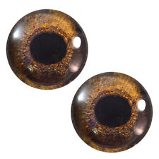 Pair of 25mm Redtail Hawk Glass Eyes for Jewelry or Taxidermy Doll Making
