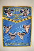 AMANGAMEK WIPIT 470 NATIONAL CAPITAL 2-PATCH SHARK TEETH OA 100TH 2015 NOAC FLAP