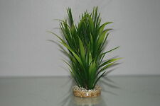 Aquarium Tropical Green Grass 6 x 6 x 20 cms Suitable For All Aquariums