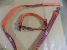 Nascar Dog Collar And  Leash, Number 20, Tony Stewart