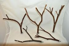 Manzanita Bird Perches Multibranch Set of Five w/ Hardware Peely & Smooth :)