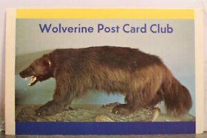 Michigan MI Detroit Historical Museum Wolverine Clube Postcard Old Vintage Card