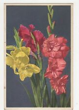 Flowers, Ghent Gladious Postcard, A851
