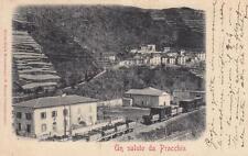 A3041) UN SALUTO DA PRACCHIA (PISTOIA). VIAGGIATA NEL 1900.