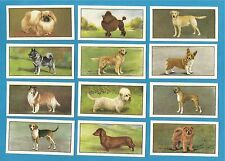 Cigarette/trade cards - DOGS - Mint condition full set