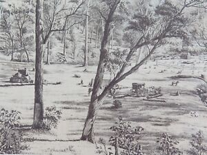 .A 100% GENUINE 1879 HISTORY of AUSTRALASIA LITHOGRAPH. FREE SELECTOR'S HUT.