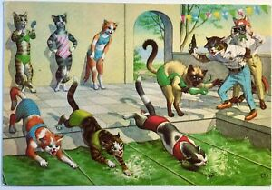 Anthropomorphic Cats Swim Team Meet Postcard Coach Gun Photographer Swimsuit