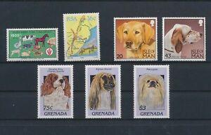 LO13740 World pets animals dogs fine lot MNH