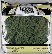 Woodland Scenics Foliage Cluster Medium Green FC58