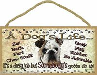 """Wanted Western Poster Style Shih Tzu Funny Dog Pet Sign Plaque 5/""""x10/"""""""