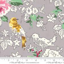 MODA Fabric ~ MEOW OR NEVER ~ Erin Michael (26111 15) Tomcat Grey - by 1/2 yard