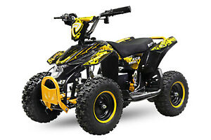800W 36V Elektromotor 3 Drossel Quad ATV Cross