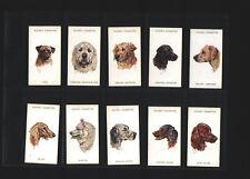 cigarette cards dogs heads 1930s unissued set full set