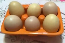 6 Artificial Fake Eggs Only Faux Food Toy Photography Props Kitchen Party Decor