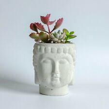 Concrete Buddha Head Planter Handmade Plant Pot Garden Indoor Outdoor Flower Zen
