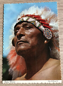 Indian Warrior in full headress, USA vintage postcard, A Devaney Inc