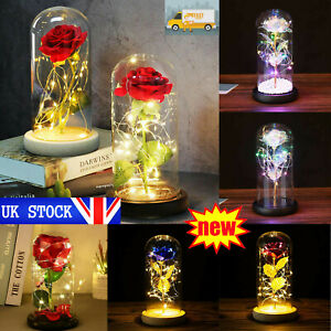 LED Light Up Enchanted Rose Light Silk Artificial Rose In Glass Dome Lamp Decor