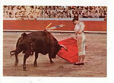 Bull Fighting Spain, Vintage 4x6 Postcard, Jan17