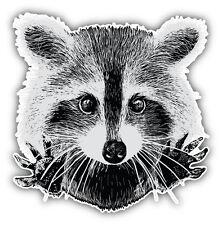 Raccoon Face Sketch Car Bumper Sticker Decal 5'' x 5''