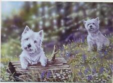 Westie West Highland Terrier Perro Perrito Animal Lindo Pintura Tarjeta De Cumpleaños