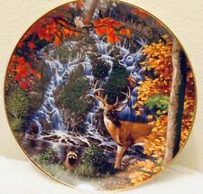 Wilderness Reflections L/E Plate Stag Falls By John Van Straalen W/Hanging Wire