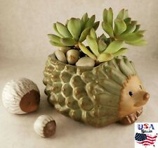 Succulent Plant Flower Ceramic Pot