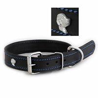 Luxury Black Leather Dog Collar 3 Different Sizes With 8 Different Design Badges