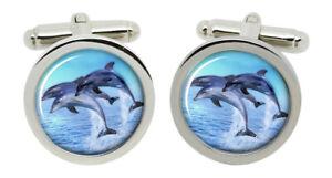 Dolphins Cufflinks in Chrome Box