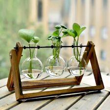 Propagation Station Wooden Stand Desktop Glass Vases Hydroponics Plant Pot