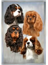 Cavalier King Charles Spaniel Dog A6 Blank Card Design No 20 by Starprint