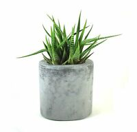 Oval Concrete Pot / Vase Succulent Cement Handmade Flowerpot Home & Garden Gray