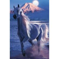 """IMPERIAL MAJESTY - CHRISTIAN RIESE LASSEN 91 x 61 cm 36"""" x 24"""" HORSES POSTER x"""