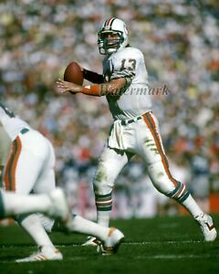 NFL Miami Dolphins QB Dan Marino Game Action Color 8 X 10 Photo Picture