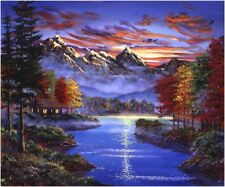 """Night View 16X20"""" Paint By Number Kit DIY Acrylic Painting on Linen Canvas Unfra"""